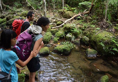 竹富町観光案内人条例の免許申請書類提出